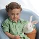 Easter Special: child portrait brown chair boy bunny in pot
